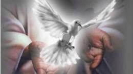 Pascua Paz Es